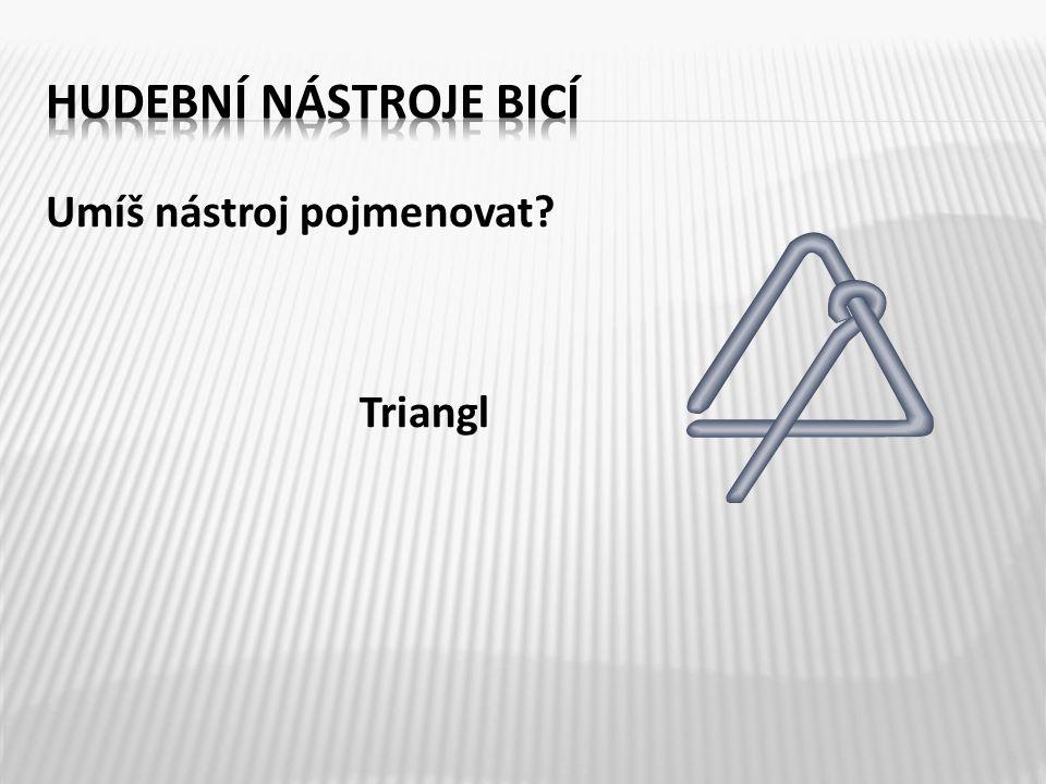 Umíš nástroj pojmenovat? Triangl 6