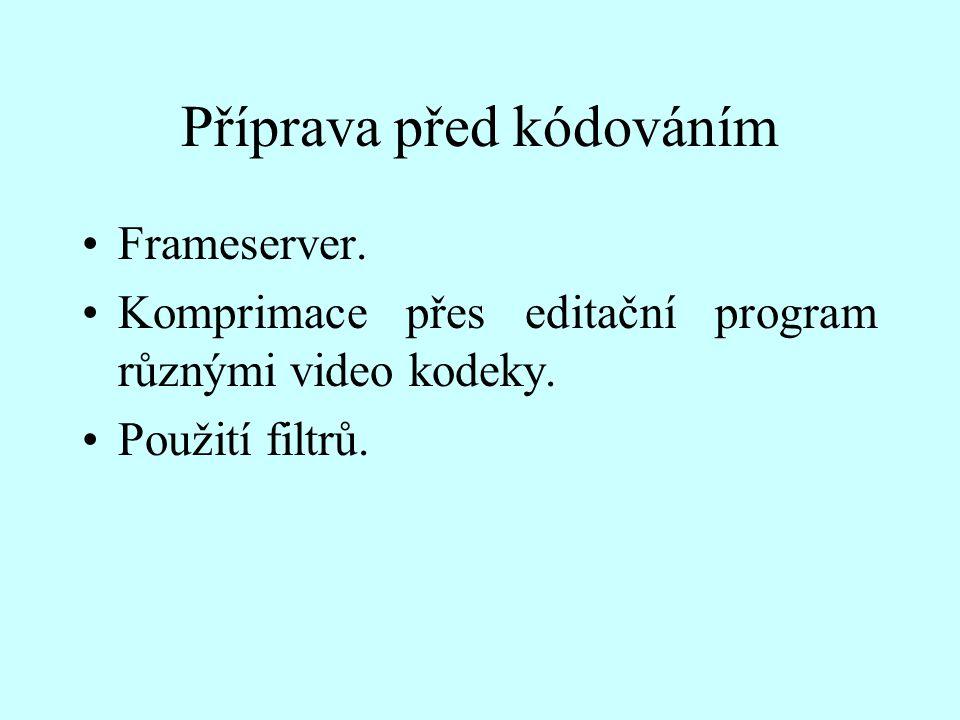 Příprava před kódováním Frameserver. Komprimace přes editační program různými video kodeky. Použití filtrů.