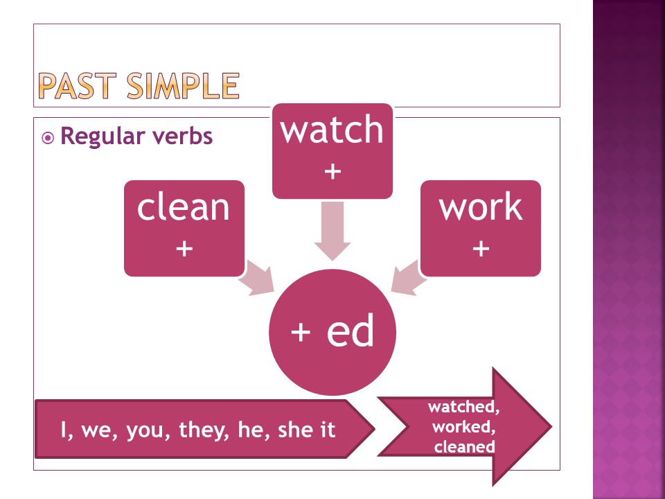  Regular verbs + ed clean + watch + work + I, we, you, they, he, she it watched, worked, cleaned