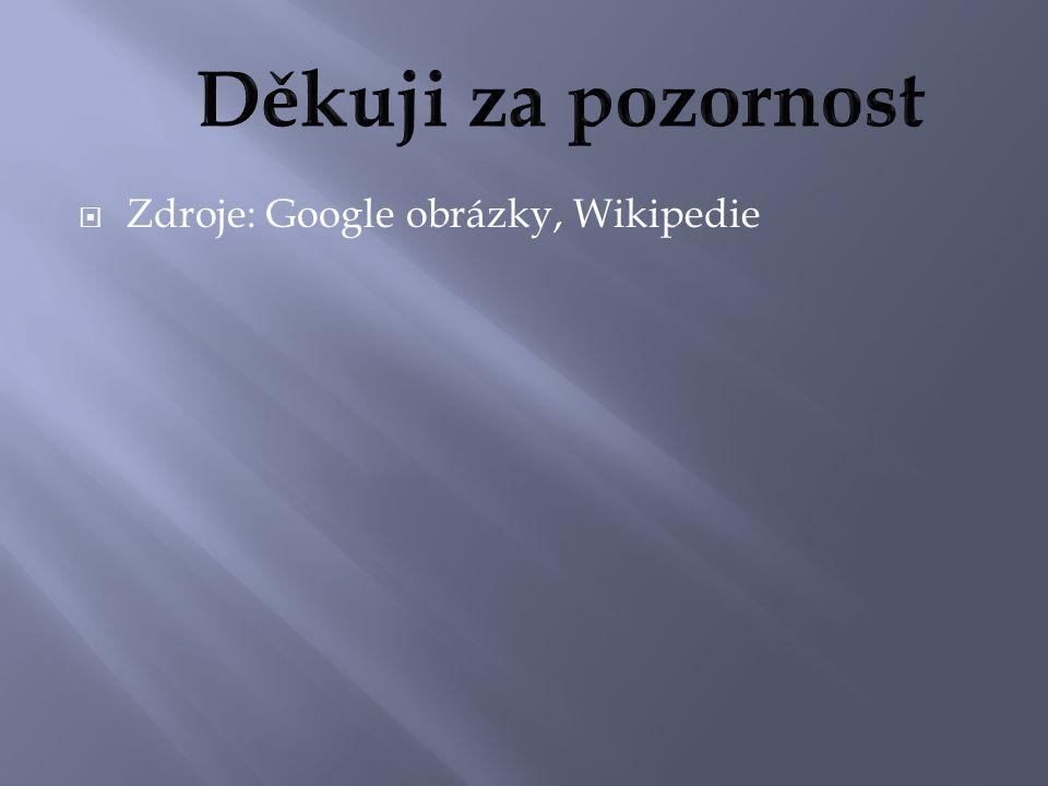  Zdroje: Google obrázky, Wikipedie