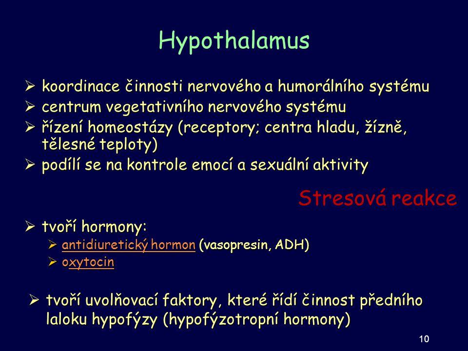 Hypothalamus  koordinace činnosti nervového a humorálního systému  centrum vegetativního nervového systému  řízení homeostázy (receptory; centra hl