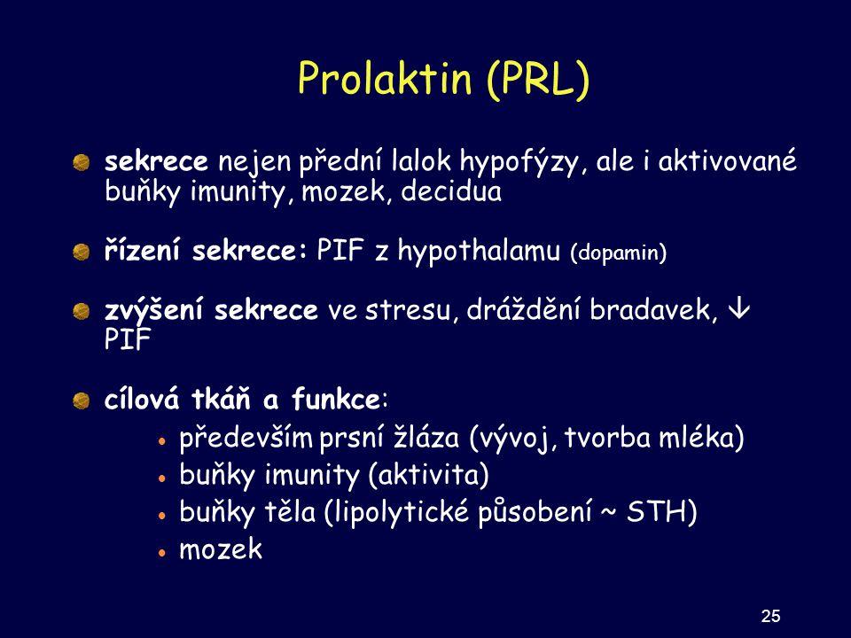Prolaktin (PRL) sekrece nejen přední lalok hypofýzy, ale i aktivované buňky imunity, mozek, decidua řízení sekrece: PIF z hypothalamu (dopamin) zvýšen