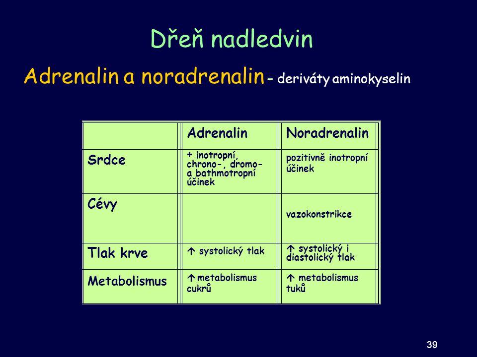 Dřeň nadledvin Adrenalin a noradrenalin – deriváty aminokyselin Účinek na:AdrenalinNoradrenalin Srdce Posiluje všechny vlastnosti srdečního svalu (ino