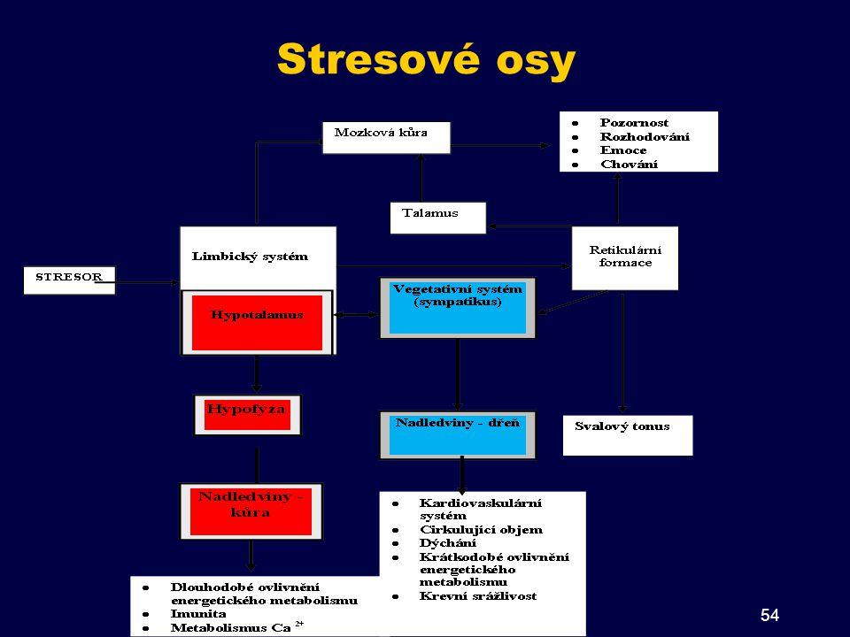 Stresové osy 54