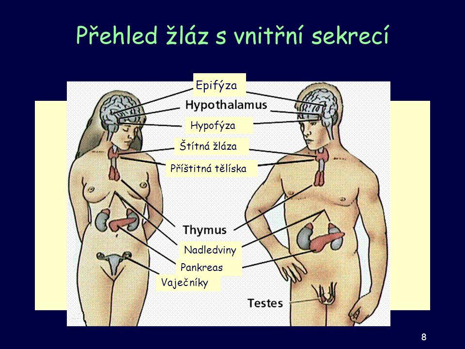 Přehled žláz s vnitřní sekrecí Epifýza Hypofýza Nadledviny Štítná žláza Příštitná tělíska Vaječníky Pankreas 8