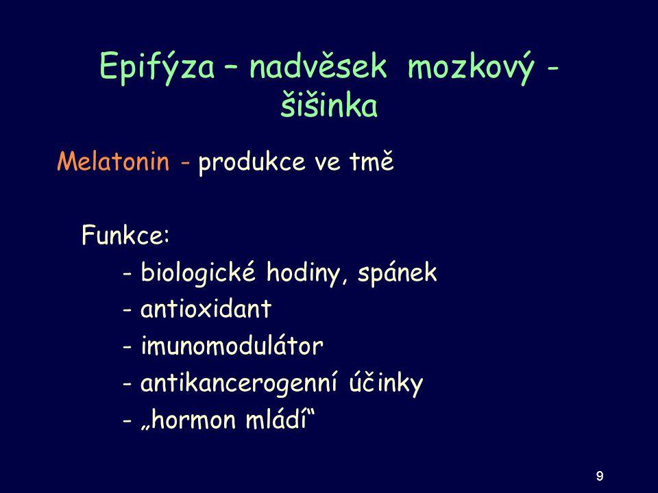 Epifýza – nadvěsek mozkový - šišinka Melatonin - produkce ve tmě Funkce: - biologické hodiny, spánek - antioxidant - imunomodulátor - antikancerogenní