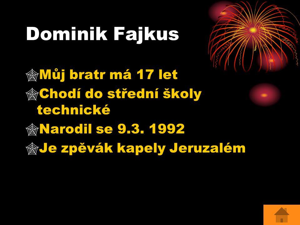 Dominik Fajkus  Můj bratr má 17 let  Chodí do střední školy technické  Narodil se 9.3. 1992  Je zpěvák kapely Jeruzalém
