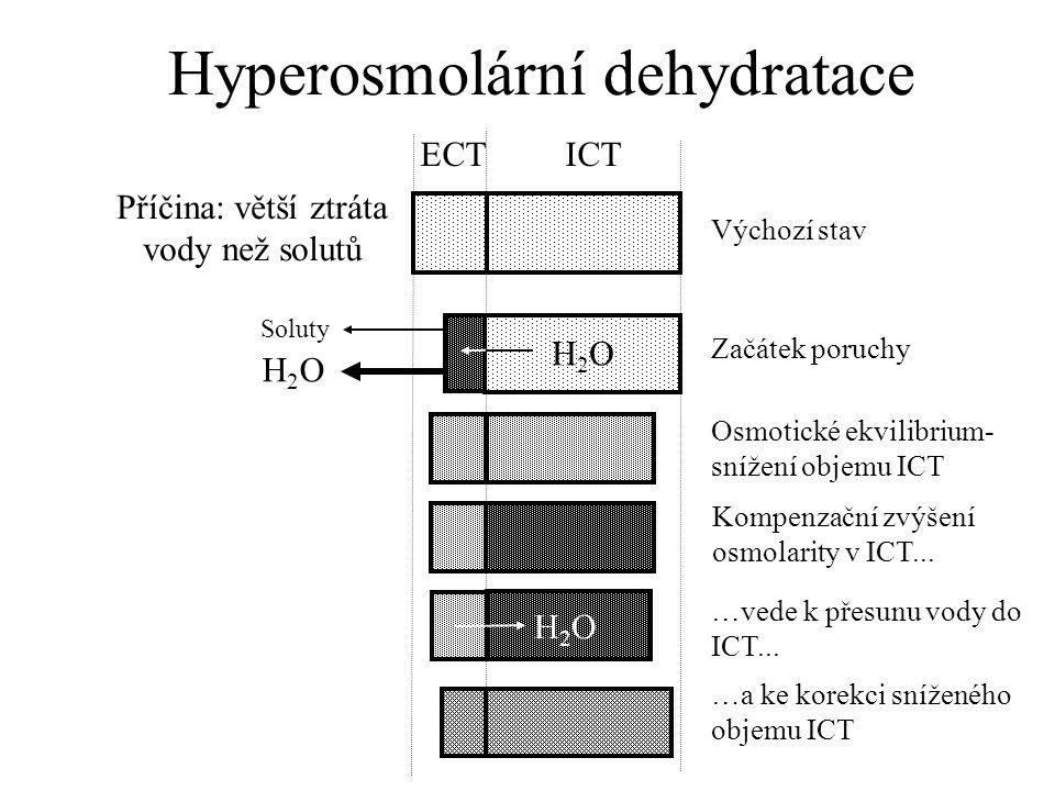 Hyperosmolární dehydratace H2OH2O H2OH2O Příčina: větší ztráta vody než solutů ECT ICT H2OH2O Výchozí stav Začátek poruchy Osmotické ekvilibrium- snížení objemu ICT Kompenzační zvýšení osmolarity v ICT...