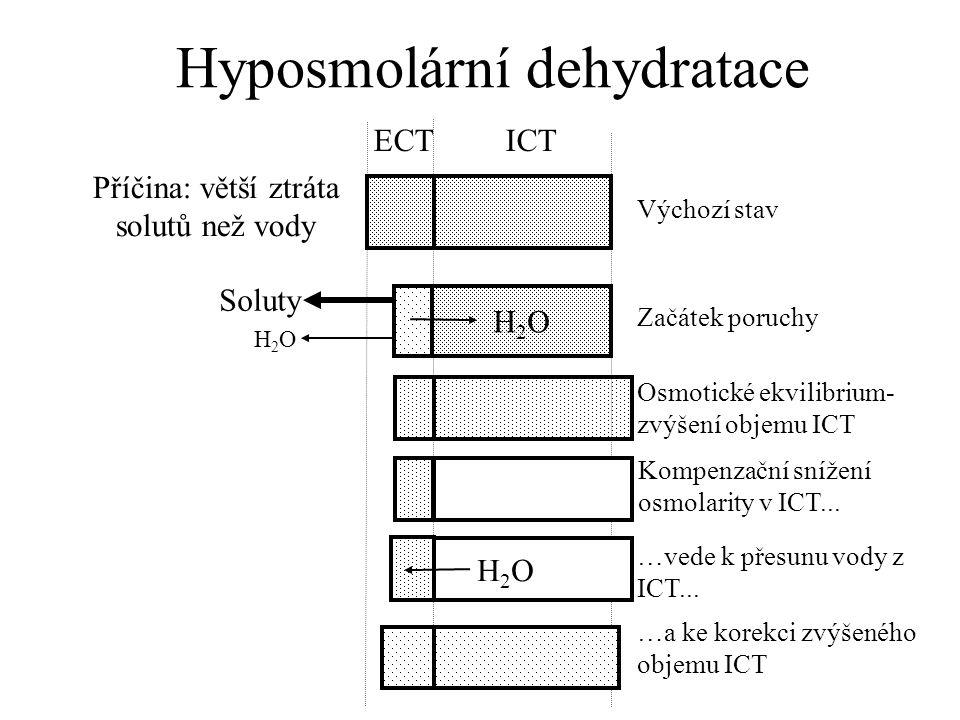 Diagnostický závěr: Hlavní příčinou hyponatrémie u pacientky byly renální ztráty sodíku během léčby furosemidem, potencované ztrátami sodíku do gastrointestinálního traktu.