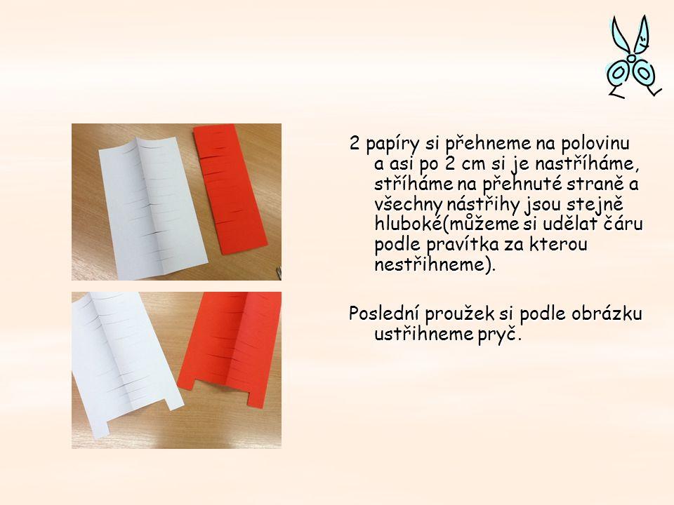 2 papíry si přehneme na polovinu a asi po 2 cm si je nastříháme, stříháme na přehnuté straně a všechny nástřihy jsou stejně hluboké(můžeme si udělat čáru podle pravítka za kterou nestřihneme).