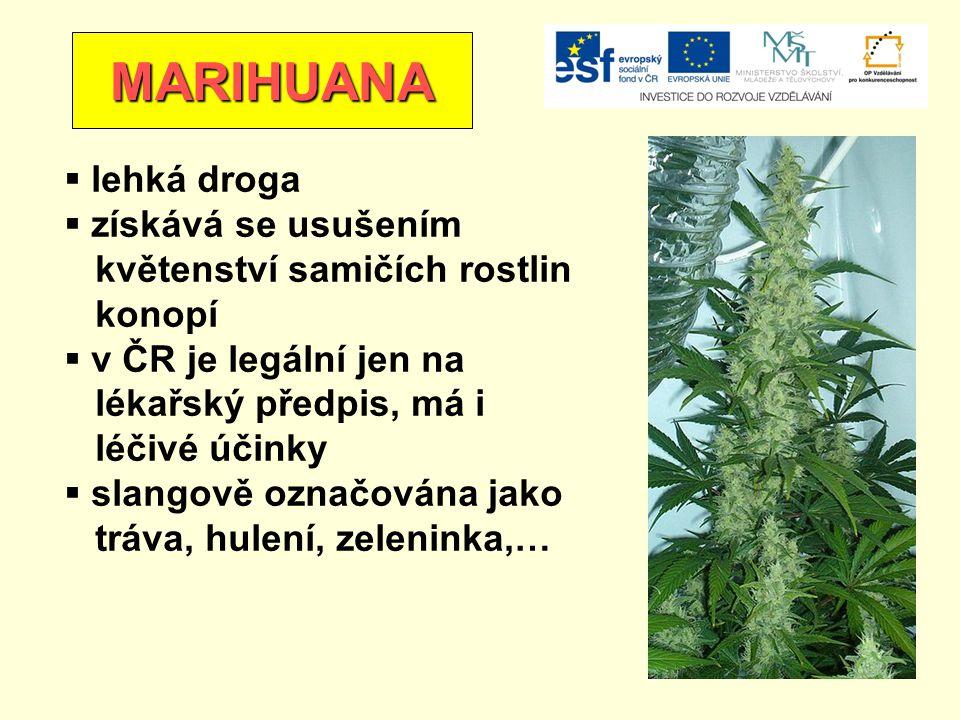 MARIHUANA  lehká droga  získává se usušením květenství samičích rostlin konopí  v ČR je legální jen na lékařský předpis, má i léčivé účinky  slangově označována jako tráva, hulení, zeleninka,…