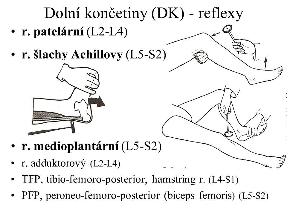 Dolní končetiny (DK) - reflexy r. patelární (L2-L4) r. šlachy Achillovy (L5-S2) r. medioplantární (L5-S2) r. adduktorový (L2-L4) TFP, tibio-femoro-pos