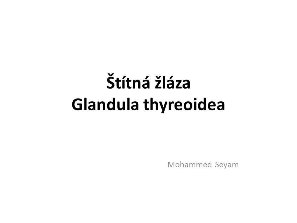 Štítná žláza Glandula thyreoidea Mohammed Seyam