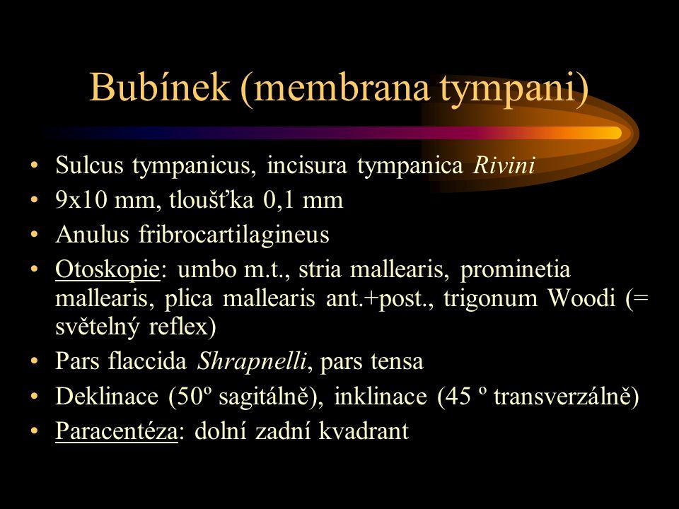 Bubínek (membrana tympani) Sulcus tympanicus, incisura tympanica Rivini 9x10 mm, tloušťka 0,1 mm Anulus fribrocartilagineus Otoskopie: umbo m.t., stri
