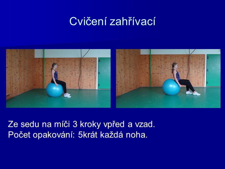 Cvičení zahřívací Ze sedu na míči 3 kroky vpřed a vzad. Počet opakování: 5krát každá noha.