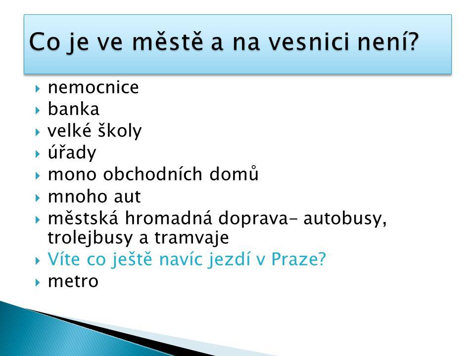  nemocnice  banka  velké školy  úřady  mono obchodních domů  mnoho aut  městská hromadná doprava- autobusy, trolejbusy a tramvaje  Víte co ještě navíc jezdí v Praze.