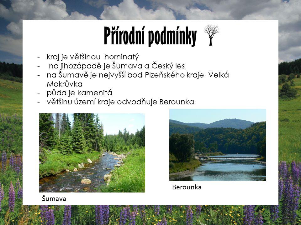 Přírodní podmínky -kraj je většinou horninatý - na jihozápadě je Šumava a Český les -na Šumavě je nejvyšší bod Plzeňského kraje Velká Mokrůvka -půda je kamenitá -většinu území kraje odvodňuje Berounka Šumava Berounka