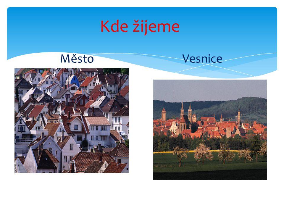 Každá země má své státní symboly. Česká republika má:  státní hymnu,  státní vlajku,  státní znak. Státní symboly