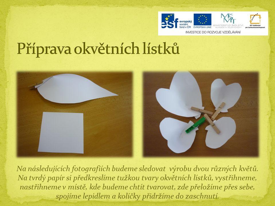 Na následujících fotografiích budeme sledovat výrobu dvou různých květů.