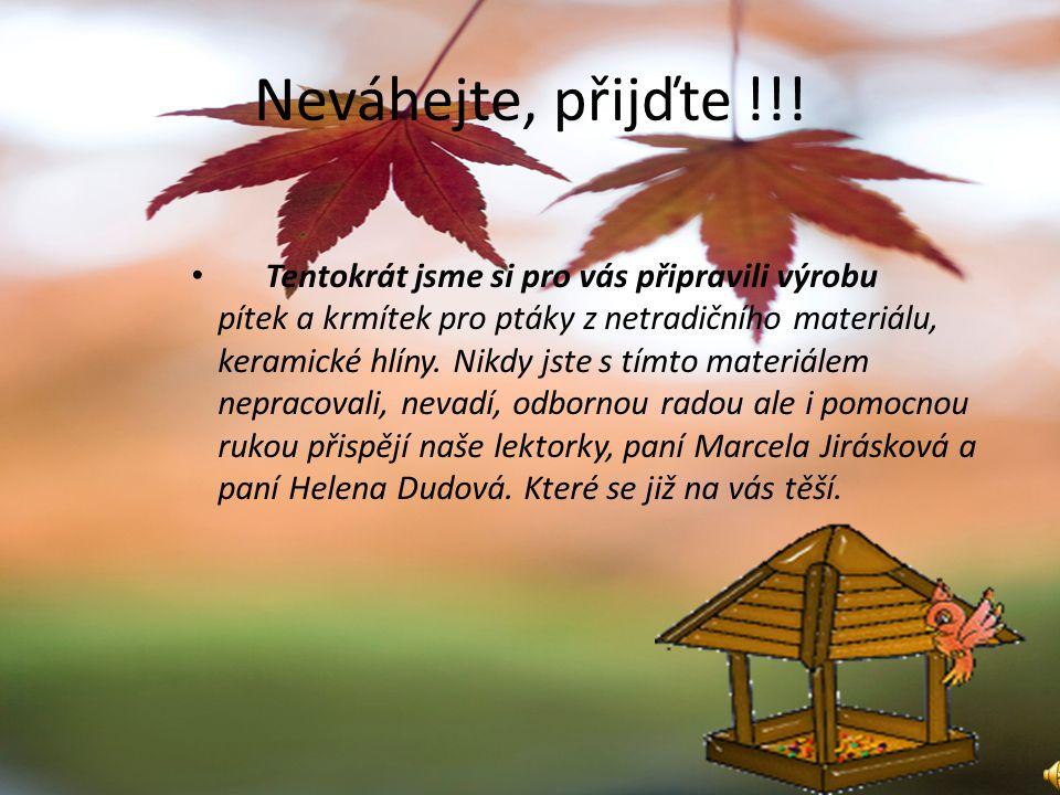 Jarní a Podzimní javorové dílny ve dnech 30.3. – 3.4.