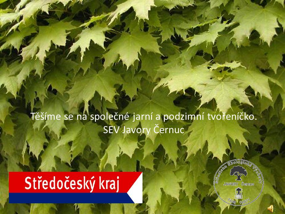 naši velvarskou dílnu najdete v Pražské ul., viz mapka, červená ikonka. Cena jedné dílny je 50,-Kč