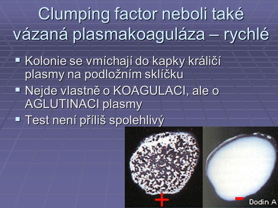 Clumping factor neboli také vázaná plasmakoaguláza – rychlé  Kolonie se vmíchají do kapky králičí plasmy na podložním sklíčku  Nejde vlastně o KOAGULACI, ale o AGLUTINACI plasmy  Test není příliš spolehlivý