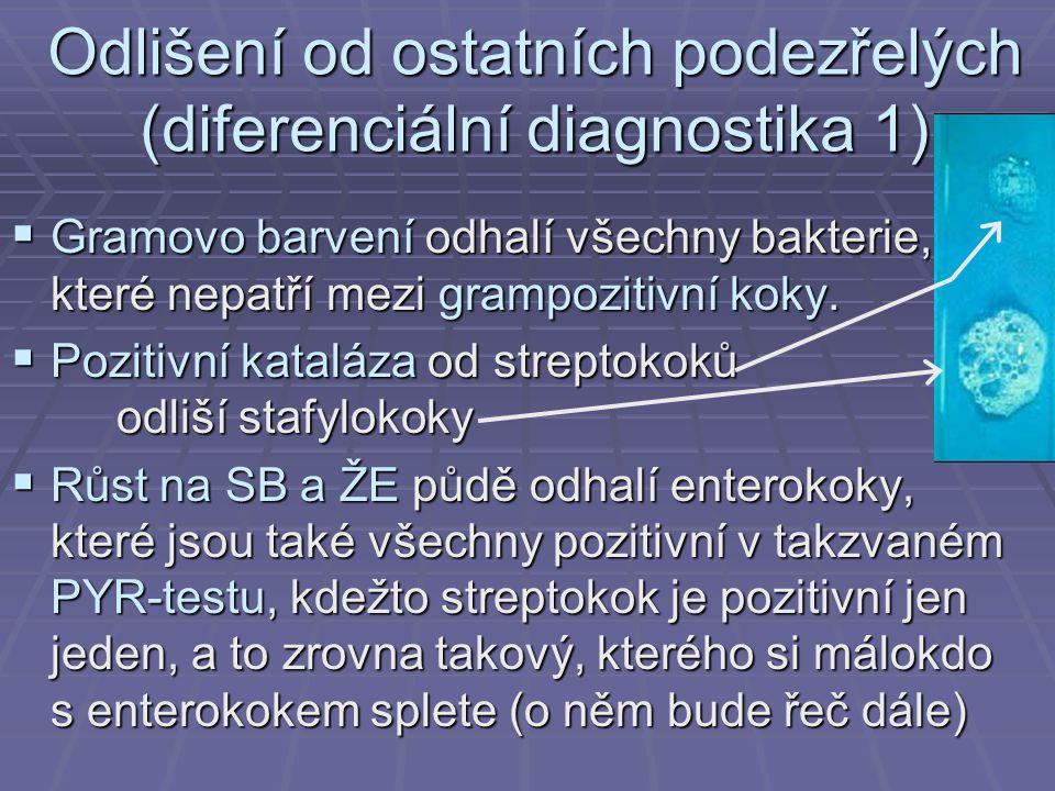Odlišení od ostatních podezřelých (diferenciální diagnostika 1)  Gramovo barvení odhalí všechny bakterie, které nepatří mezi grampozitivní koky.