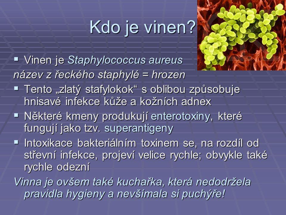 Enterokoky MikroskopieŽluč-eskulinSlanetz-Bartley