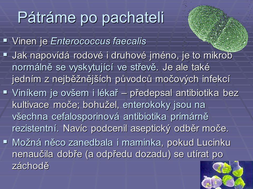 Pátráme po pachateli  Vinen je Enterococcus faecalis  Jak napovídá rodové i druhové jméno, je to mikrob normálně se vyskytující ve střevě.