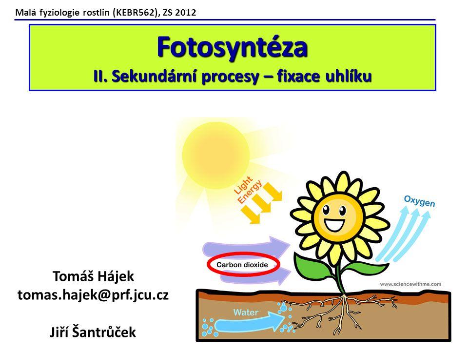 Malá fyziologie rostlin (KEBR562), ZS 2012 Fotosyntéza II.
