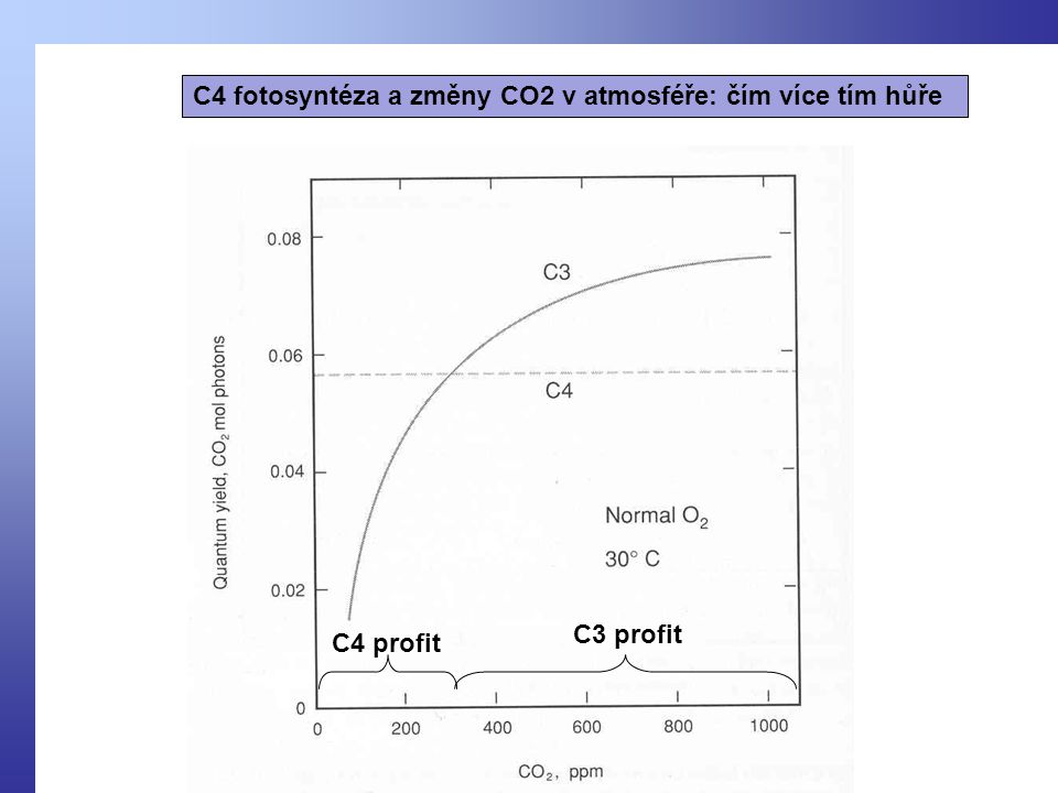 C4 fotosyntéza a změny CO2 v atmosféře: čím více tím hůře C4 profit C3 profit