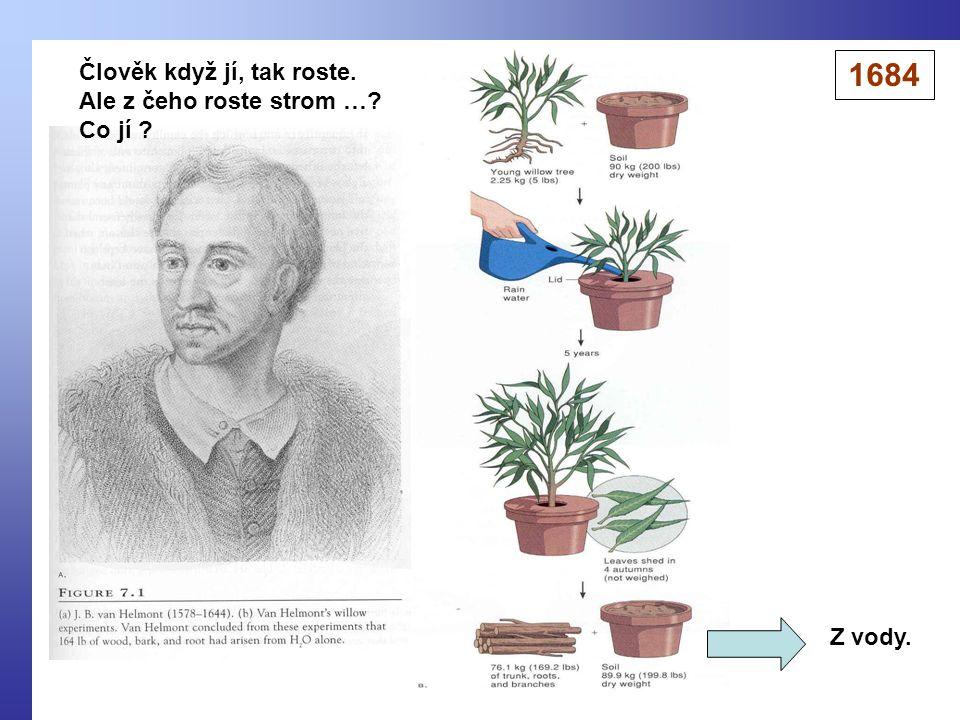 Člověk když jí, tak roste. Ale z čeho roste strom …? Co jí ? Z vody. 1684