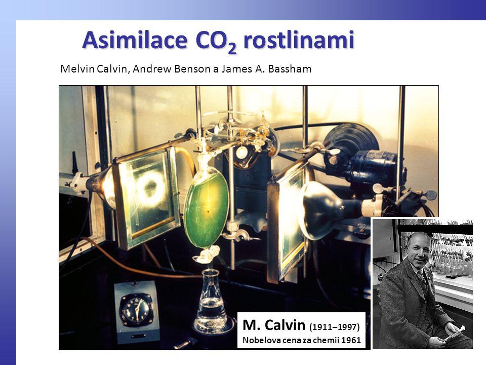 Asimilace CO 2 rostlinami M.
