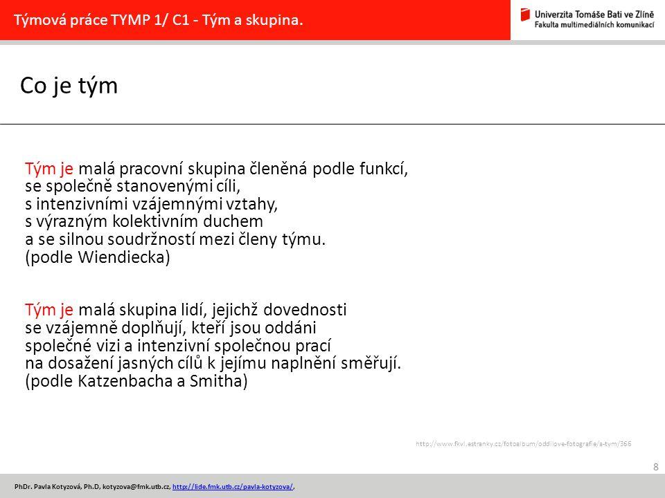 Co je tým 8 PhDr. Pavla Kotyzová, Ph.D, kotyzova@fmk.utb.cz, http://lide.fmk.utb.cz/pavla-kotyzova/,http://lide.fmk.utb.cz/pavla-kotyzova/ Týmová prác