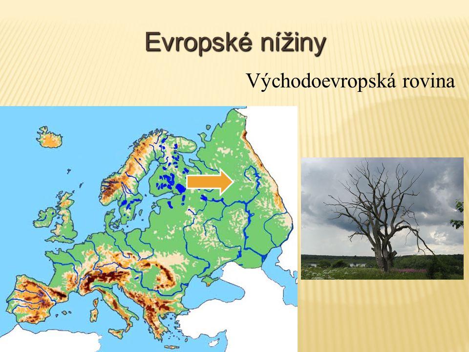 Evropské nížiny Východoevropská rovina