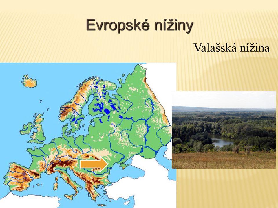Evropské nížiny Valašská nížina