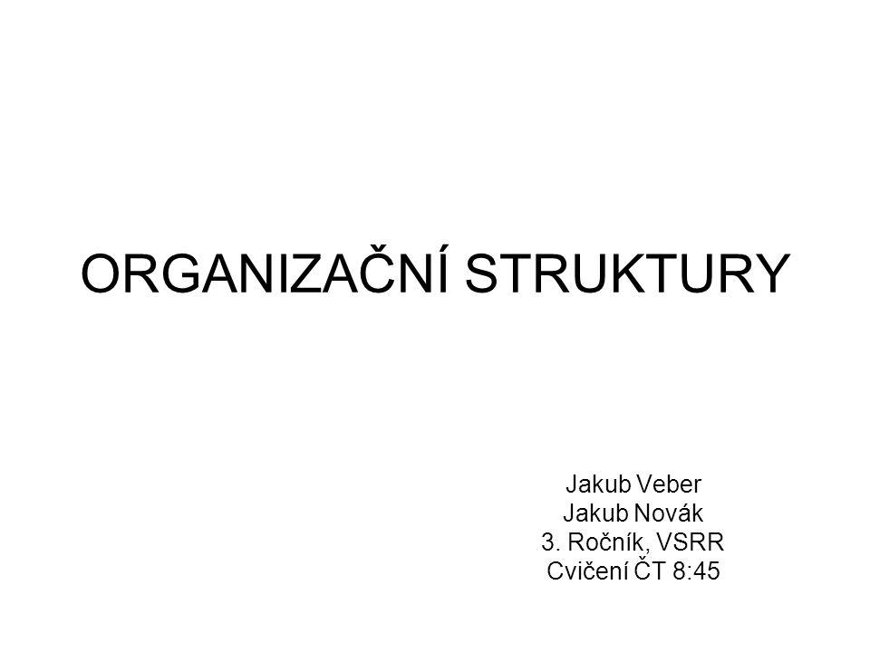 Pojem organizační struktura Organizační struktura patří do kategorie organizování Smyslem organizačních struktur je rozdělení práce mezi členy organizace a koordinace jejich aktivit tak aby byly zaměřeny k dosahování organizačních cílů Je to mechanismus, který umožňuje koordinaci a řízení aktivit členů organizace Činnost organizačních útvarů ve struktuře je popsána organizačním řádem, náplň pracovních míst pak v popisech práce