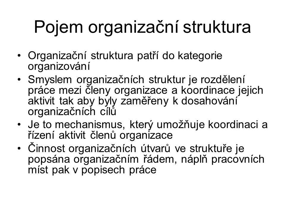 Organizační struktura umožňuje: Efektivní činnost organizace a využití zdrojů Sledování aktivit organizace Přidělení odpovědnosti za jednotlivé oblasti činnosti organizace členům a skupinám členů Koordinaci činností různých složek organizace a různých oblastí činnosti Přizpůsobení změnám v okolí Sociální uspokojení členů, kteří pracují v organizaci