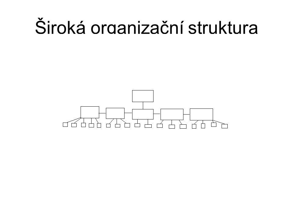Zdroje Literatura: Management, Bělohlávek. Rubico