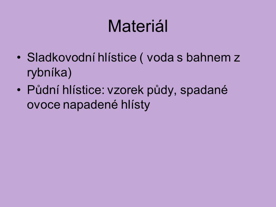 Materiál Sladkovodní hlístice ( voda s bahnem z rybníka) Půdní hlístice: vzorek půdy, spadané ovoce napadené hlísty