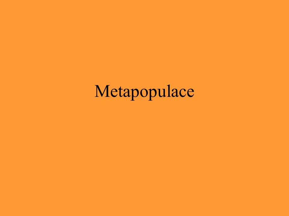 Metapopulace