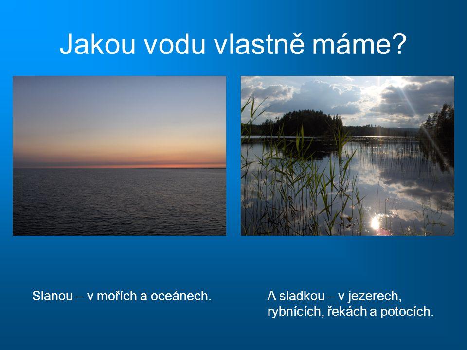 Jakou vodu vlastně máme? Slanou – v mořích a oceánech.A sladkou – v jezerech, rybnících, řekách a potocích. Víte, že… …sladká voda není ve skutečnosti