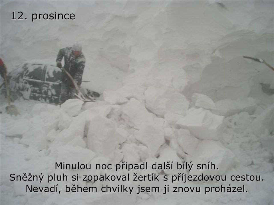 10. prosince Minulou noc krásně sněžilo. Probudil jsem se a vše bylo pod jiskřivou sněžnou pokrývkou. Krása, jako na vánočním pohledu. Proházel jsem p