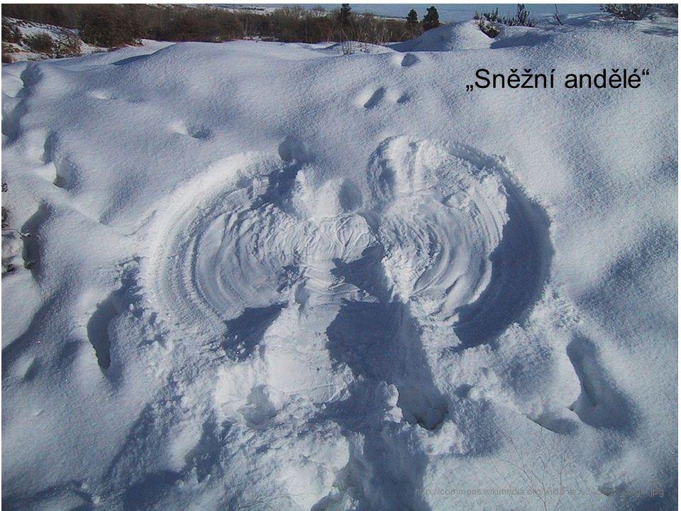 """http://commons.wikimedia.org/wiki/File%3ASnow_angel.jpg """"Sněžní andělé"""