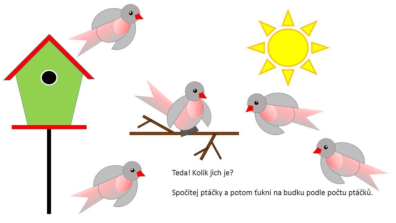 Teda! Kolik jich je? Spočítej ptáčky a potom ťukni na budku podle počtu ptáčků.