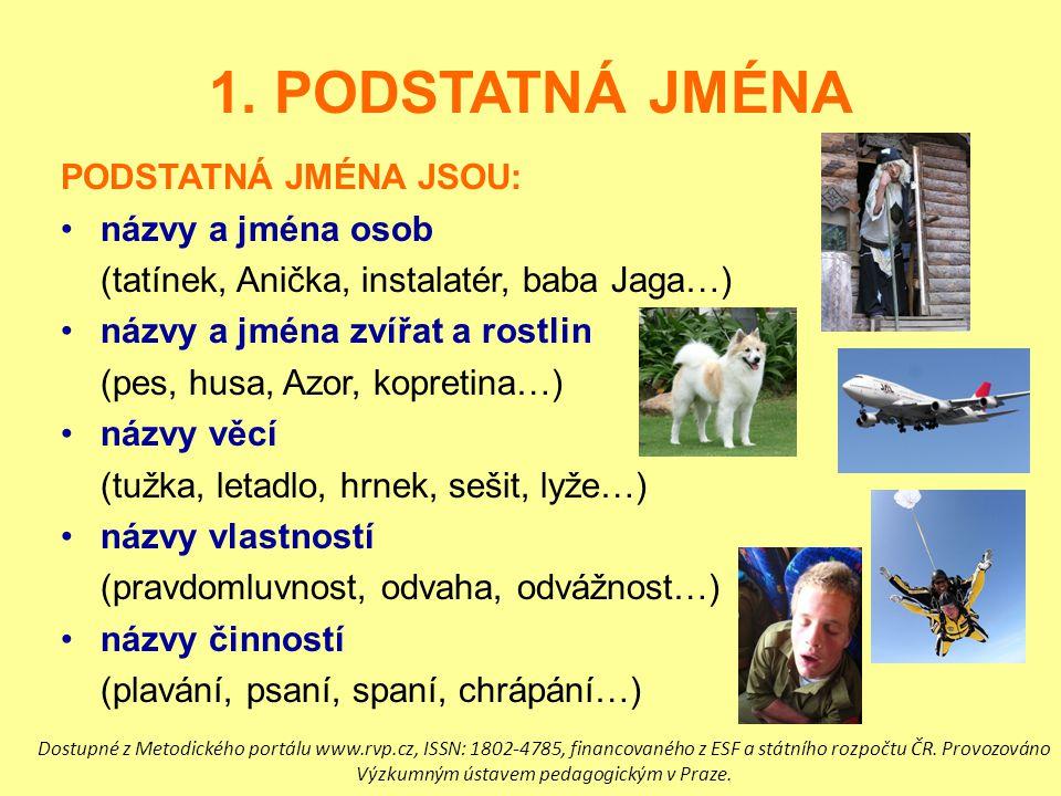1. PODSTATNÁ JMÉNA PODSTATNÁ JMÉNA JSOU: názvy a jména osob (tatínek, Anička, instalatér, baba Jaga…) názvy a jména zvířat a rostlin (pes, husa, Azor,