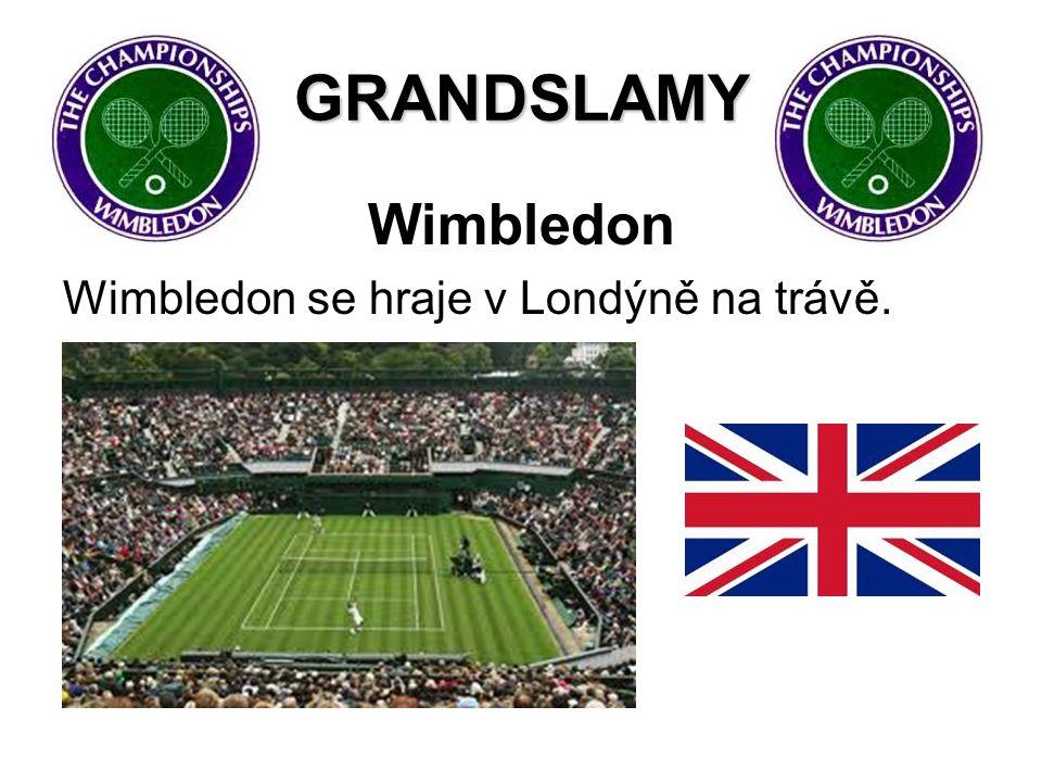 GRANDSLAMY Wimbledon Wimbledon se hraje v Londýně na trávě.