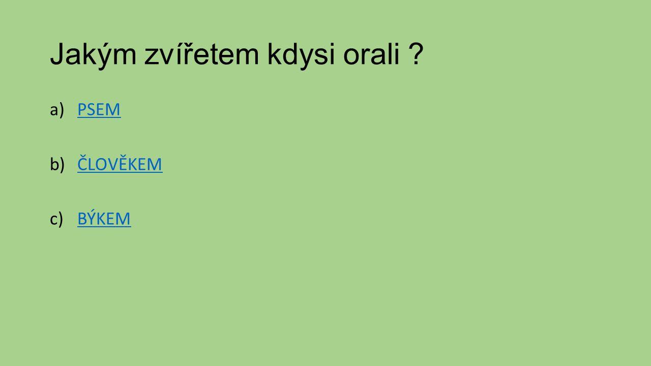Jakým zvířetem kdysi orali ? a)PSEMPSEM b)ČLOVĚKEMČLOVĚKEM c)BÝKEMBÝKEM