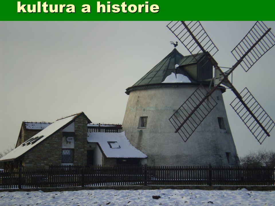kultura a historie