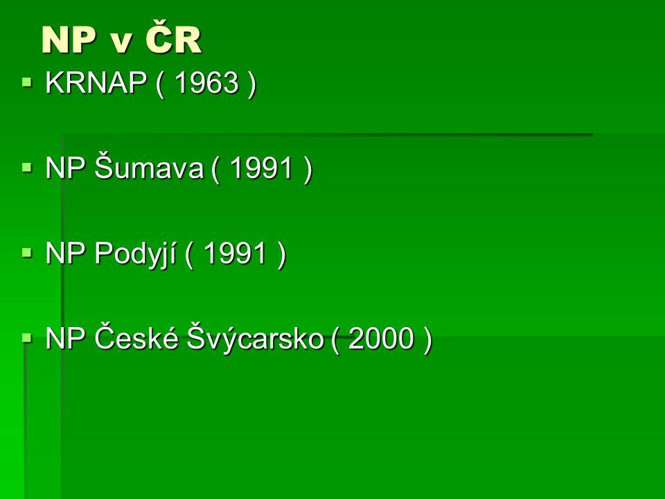 NP v ČR  KRNAP ( 1963 )  NP Šumava ( 1991 )  NP Podyjí ( 1991 )  NP České Švýcarsko ( 2000 )